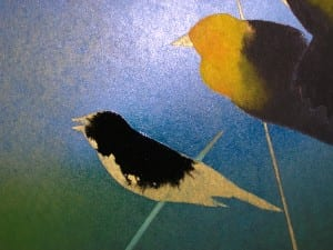 Birds being painted