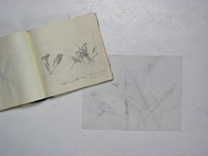 Sketchbook and drawing