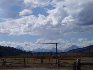Turpin Meadow Ranch view
